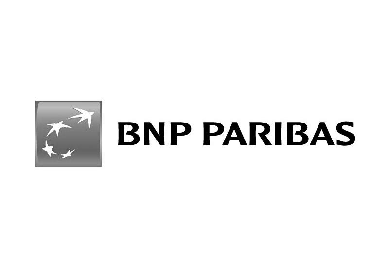 BNP PARIBASCadrage de la Fusion Fortis/BNP
