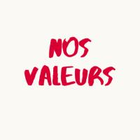 TEMOIGNAGE CONSULTANT : NOS VALEURS